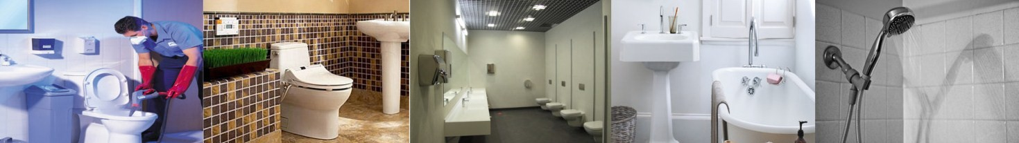 Sanitaarruumide ja WC-puhastusvahendid